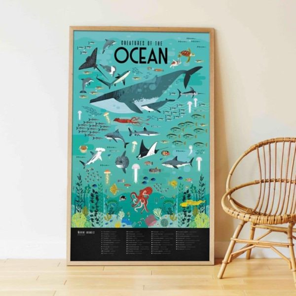 poster éducatif + 59 stickers océans poppik (11)