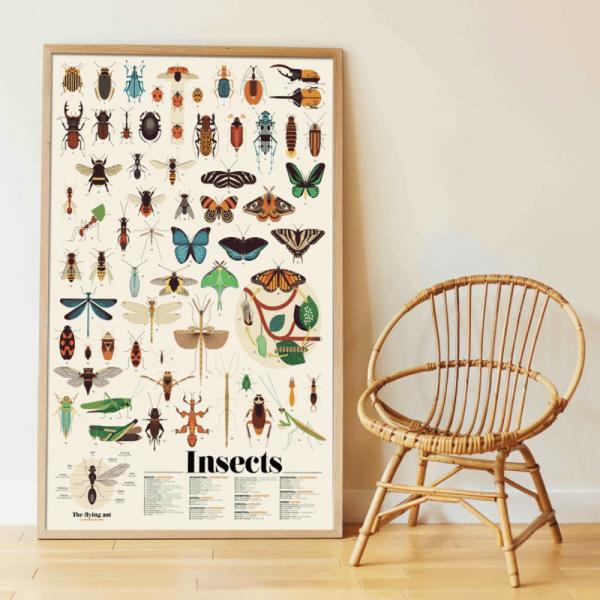 Poster éducatif Insectes - Poppik