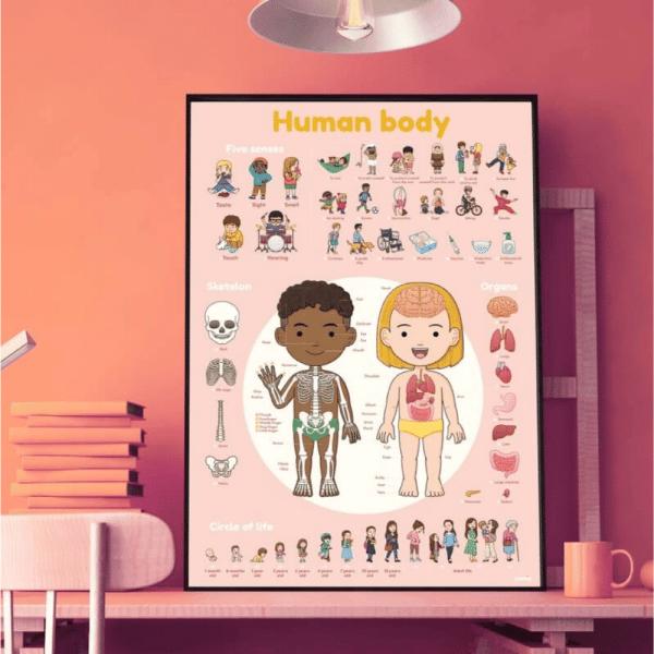 Poster éducatif le corps humain - Poppik