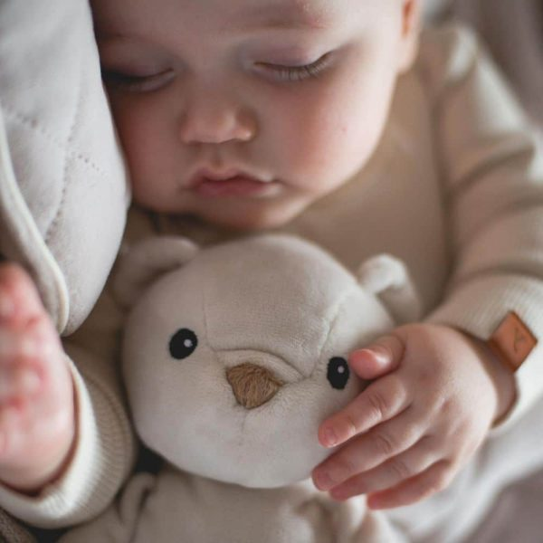 ourson dormeur whisbear (4)